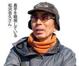 長芋を栽培している松沢 吉久さん