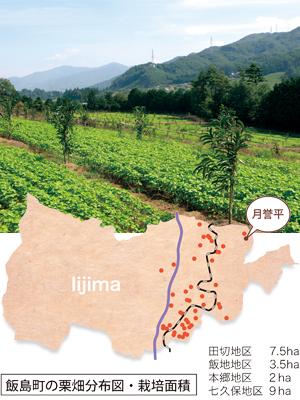 飯島町の栗畑分布図・栽培面積